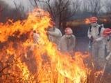 黄冈山林突发大火